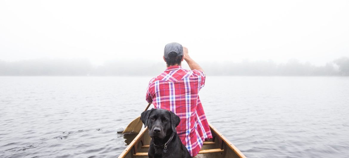 black dog and man in a canoe on a lake on a misty day