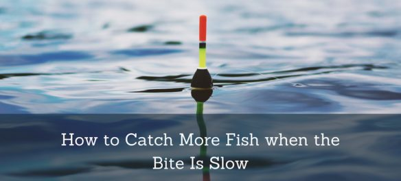 picture of a fishing bobber with the caption: How to catch more fish when the bite is slow.